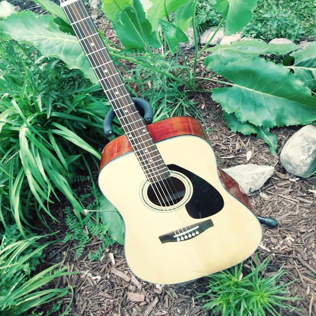 Yamaha SCF08 full size dreadnaught guitar image