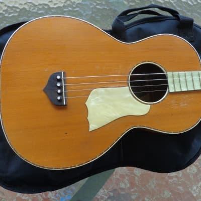 "1920's Supertone Tenor Guitar - Pearloid Fretboard - 21"" Scale Player"