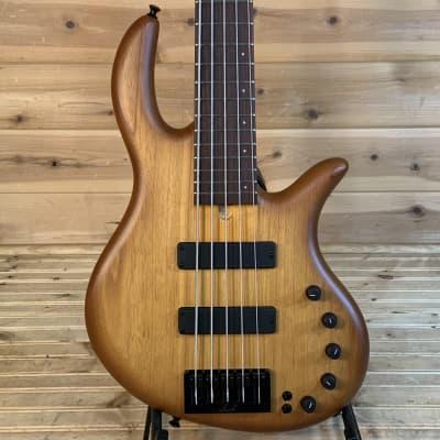 Elrick Standard Series Handmade e-volution 5-String  Electric Bass - Satin Honeyburst for sale