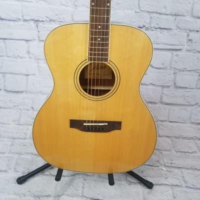 Austin AA45C Classical Acoustic Guitar for sale