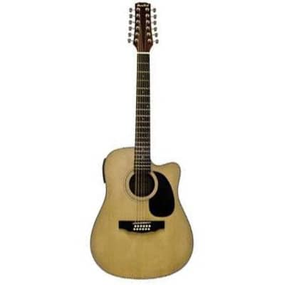 Beaver Creek Dreadnaught 12 String Acoustic Electric w/Bag BCTV05CE for sale