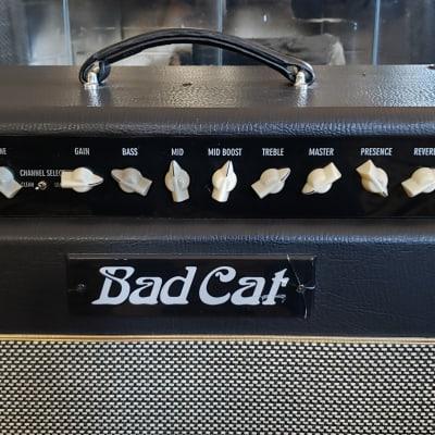Bad Cat Cougar 50 50-Watt 1x12