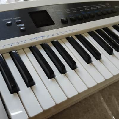 Roland AX-Synth keytar White / Synthonia Library