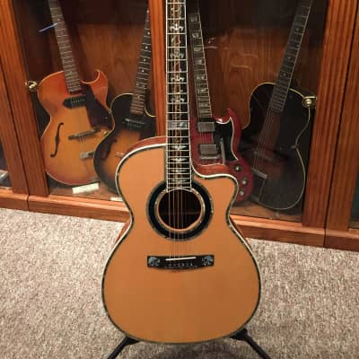 Minarik Acoustic Custom #1 for sale