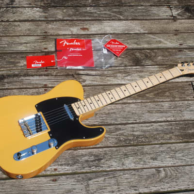 Fender Telecaster Special Edition Deluxe Ash 2019 Butterscotch Blonde Hot Standard Tele Single-Coil