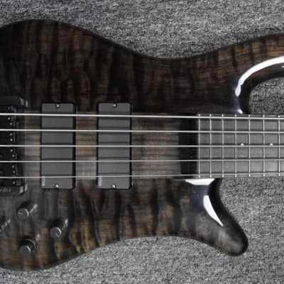***spector ns-5xl *owned / signed by bryan beller**