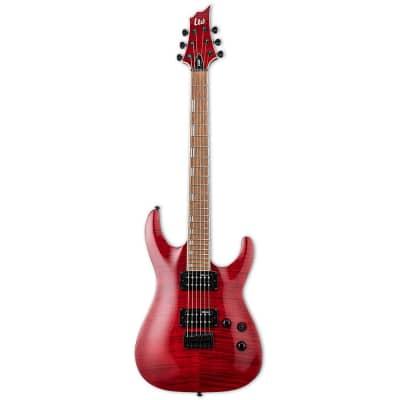 ESP LTD H-200FM STR H-Series Electric Guitar in See Thru Red for sale