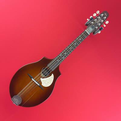[USED] Seagull S8 Mandolin Burnt Umber (See Description). for sale