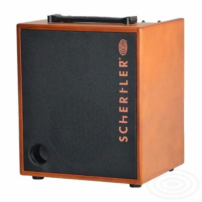 Schertler DAVIDW 100 Watt Acoustic Guitar Amplifier for sale