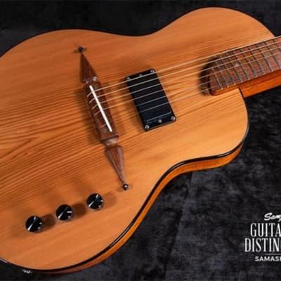 Rick Turner Renaissance Deuce Standard RS6-DB-STD  Semi-Hollow Electric Guitar for sale