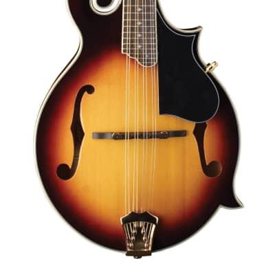 Washburn Americana F-Style Mandolin - Tobacco Sunburst - M3SWK-D-U for sale