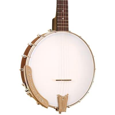 Gold Tone CC-50TR Short Scale Travel Banjo Left-Handed w/ Bag