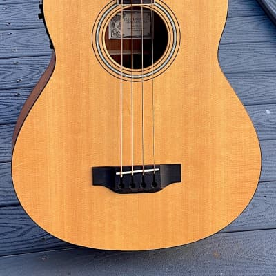 Larrivee B-02e Electric Acoustic Bass 2001 a killer playing & sounding yet mostly unknown Bass ! for sale