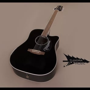 Takamine EG341SC-BK Acoustic/Electric Dreadnought - Black (239) for sale