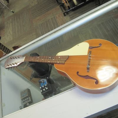 Kay PROJECT : A Style Mandolin for sale
