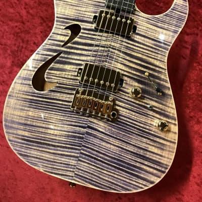 T's Guitars DTL-Hollow22