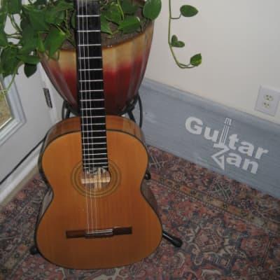 Höfner Anno Vintage Classical Nylon String Guitar~Hofner Concert~w/Tour Grade Hard Case~70's~Germany for sale