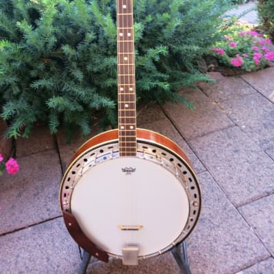 KAY Tenor banjo K52T, vintage 1950ies  brown for sale