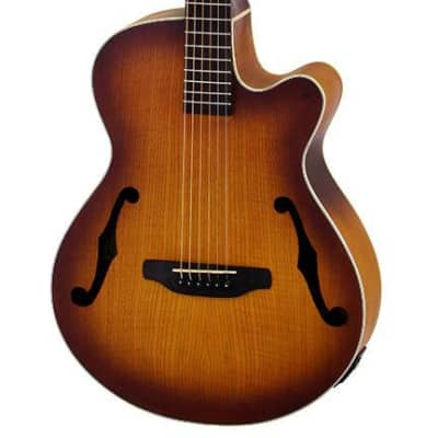 Aria FET-F1 Elecord Series AC/EL Guitar with Cutaway in Light Vintage Sunburst for sale