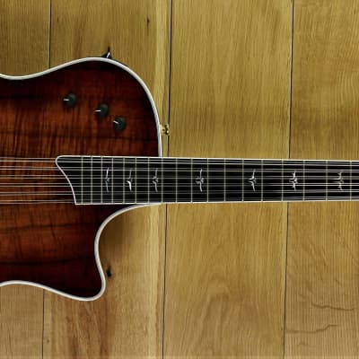 Taylor T5C2 Custom 12 String ~ Secondhand for sale