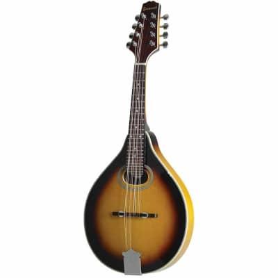 Savannah Model SA-110 A Style Oval Soundhole Mandolin in a Sunburst Finish
