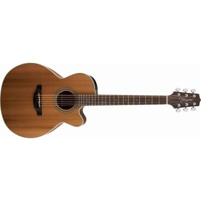 Takamine GN20CE NEX Grand Auditorium Electro Acoustic, Natural Satin for sale