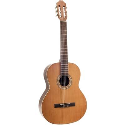 Juan Salvador 2C 4/4-Size Classical Guitar for sale