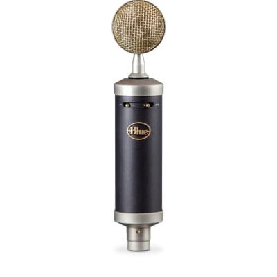 Blue Baby Bottle SL Large Diaphragm Cardioid Condenser Microphone