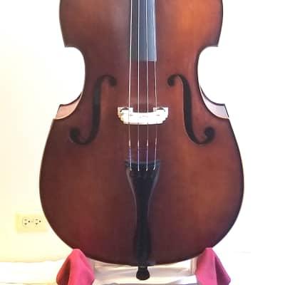 Christopher Prominence  Gamba model Bass, 5/8