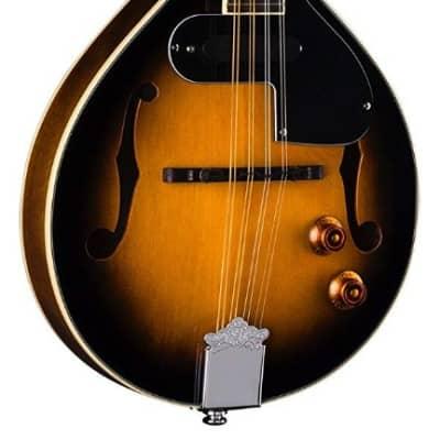 Dean TNAE MP VS Acoustic Electric A style Mandolin in a  Sunburst Finish