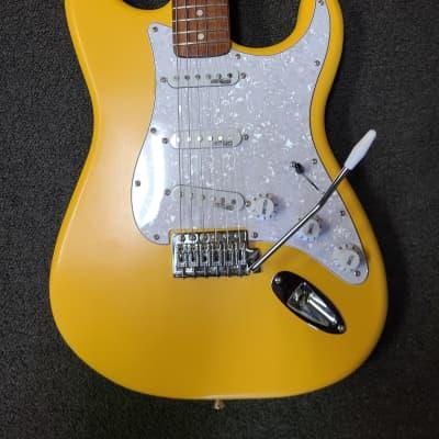 Custom Build Autumn Gold Stratocaster