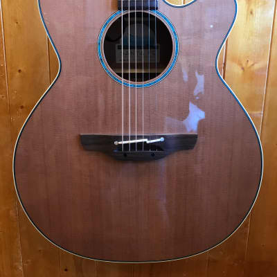 Takamine Santa Fe TSF40C Acoustic Electric Guitar Solid Cedar Top w/OHC *Made in Japan for sale