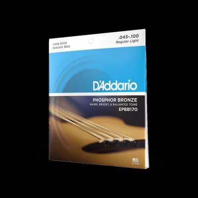 D'Addario Phosphor Bronze Acoustic Bass Strings 45-100