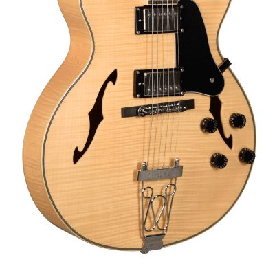 Teton F1433FM F Series Arch Top 6-String Electric Guitar w/Hardshell Case - Flame Maple for sale