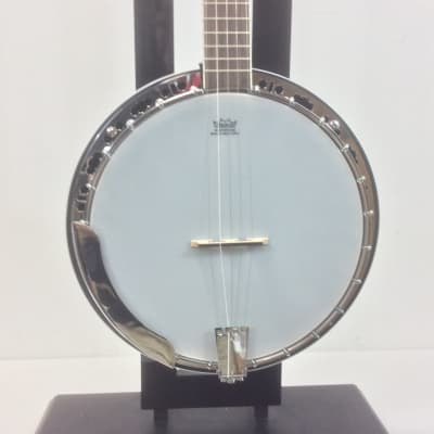 Washburn B11K Banjo for sale