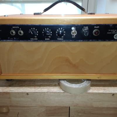 Traynor YBA-2 Bass Mate 15-Watt Guitar / Bass Amp Head (6V6 Version) 1960s