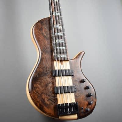 Elrick Handcarved e-volution 5-String Bass Guitar, Platinum Series Single-Cut for sale