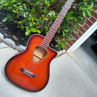 1991 Hohner TWP600B Acoustic Electric Bass - Plays and Sounds Great! for sale
