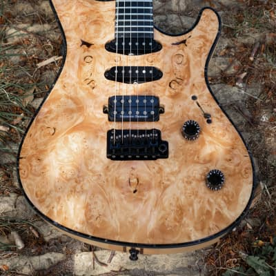 Mayones Regius 6 V24 - Selected 4A Burl Maple for sale