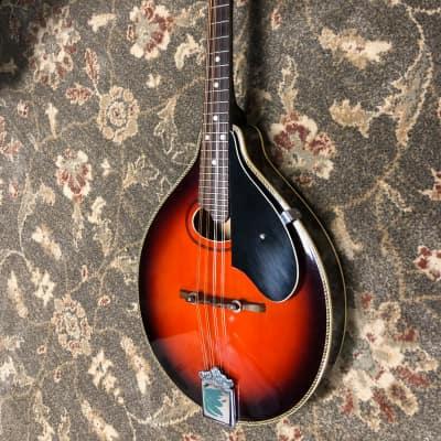 Antares  Mandolin entry level ? for sale