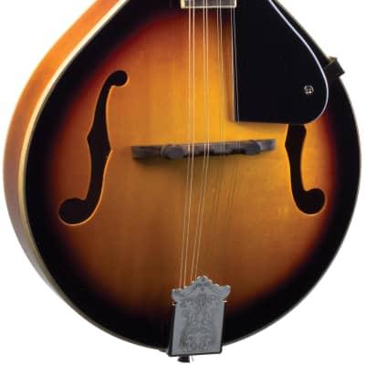 Savannah A-Model Mandolin, Sunburst for sale