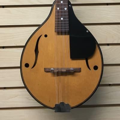 Strad-O-Lin Mandolin, ca. 1955-56 (used) for sale