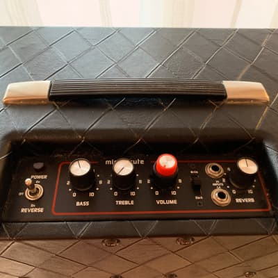 Polytone Mini Brute IV for sale