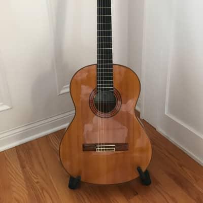 Cordoba 75F Classical guitar 2000