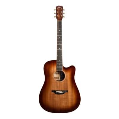 Tokai Terra Nova K5 Model Dreadnought Cutaway Acoustic-Electric Guitar (Bourbon Fade Natural Gloss) for sale