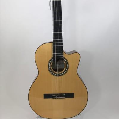 Orpheus Valley FG65CWS Fandango Acoustic-Electric Classical for sale
