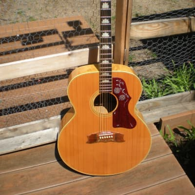 Cortez  J-200 Jumbo Maple  lawsuit Gibsn copy stunning maple /OFFER for sale