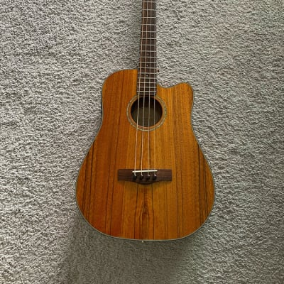 Fender Victor Bailey Signature Natural Acoustic Electric 4-String Bass Guitar for sale