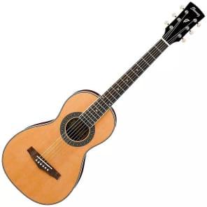 Ibanez PN1NT Acoustic Guitar