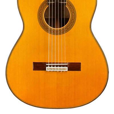 Teodoro Perez Maestro 2010 Classical Guitar Cedar/African Rosewood for sale